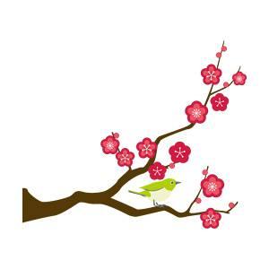 梅の枝のイラスト5