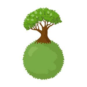 Tree on the planet