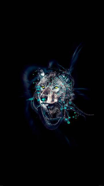ad70-wolf-by-ekud-illust-art