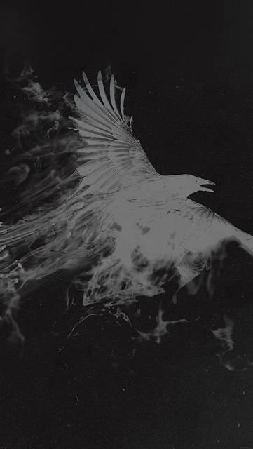 af10-white-bird-smoke-art-illust