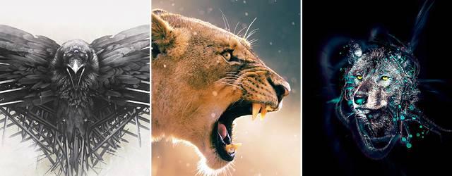 【iPhone6/Plus壁紙】かっこいい動物画像集(ライオン・狼・猫など)