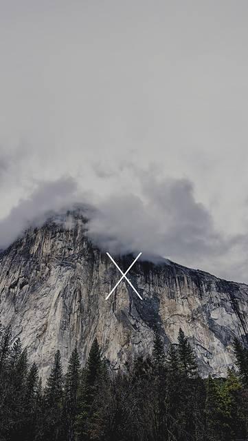 森の木々と巨大な岩山の写真壁紙