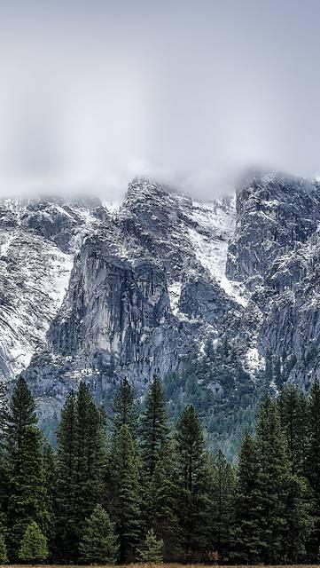 森と雪山と霞の写真壁紙