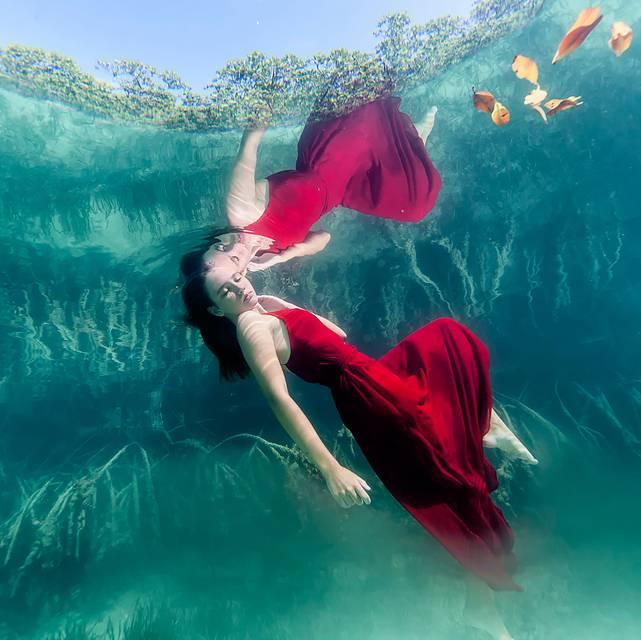 思わず心を奪われる!あまりにも美しい水中作品 - 08