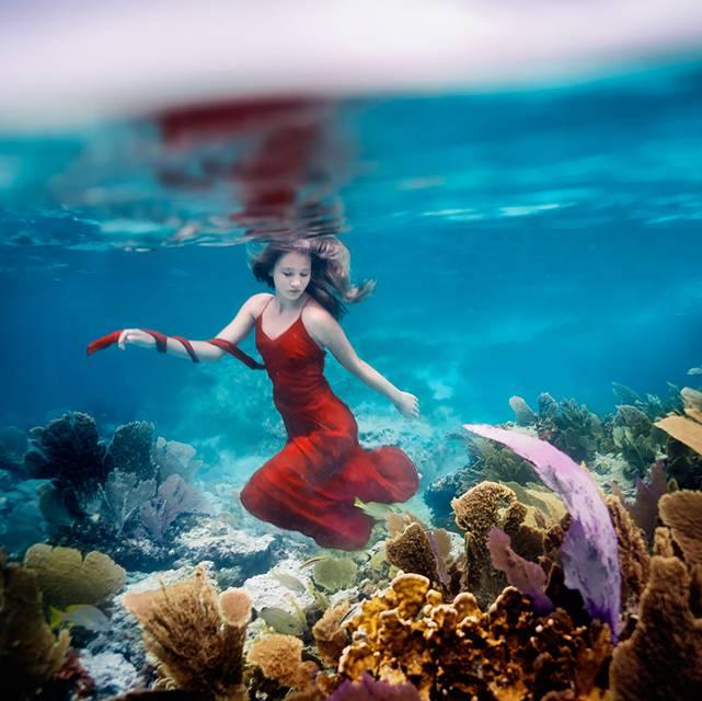 思わず心を奪われる!あまりにも美しい水中作品 - 09