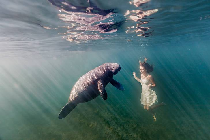 思わず心を奪われる!あまりにも美しい水中作品 - 13