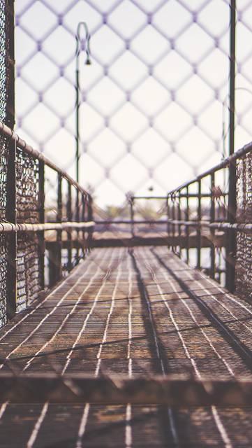 フェンス越しにみた橋