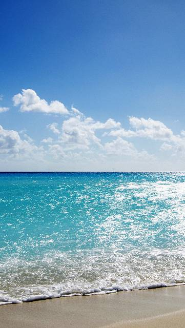 爽やかな夏の海と砂浜の写真