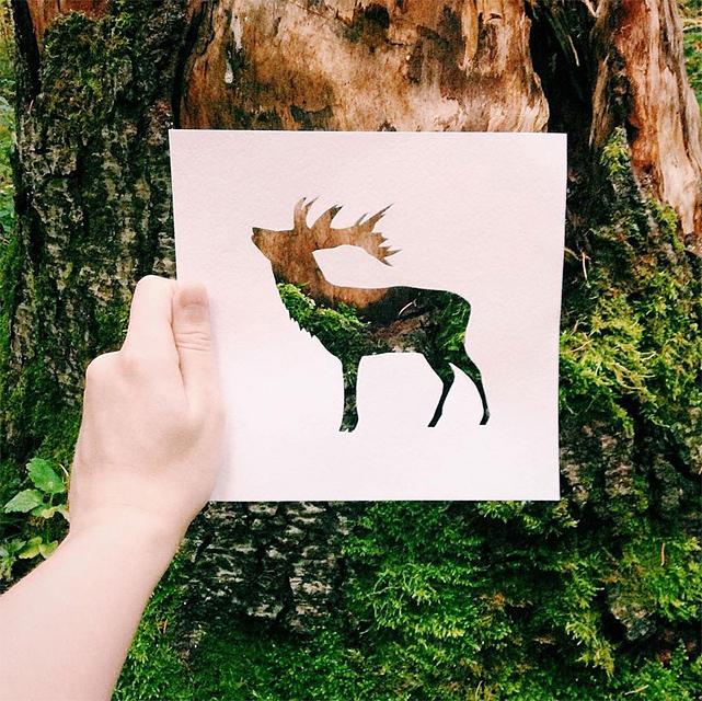 動物のシルエットで切り取って作る美しいアート作品 - 01