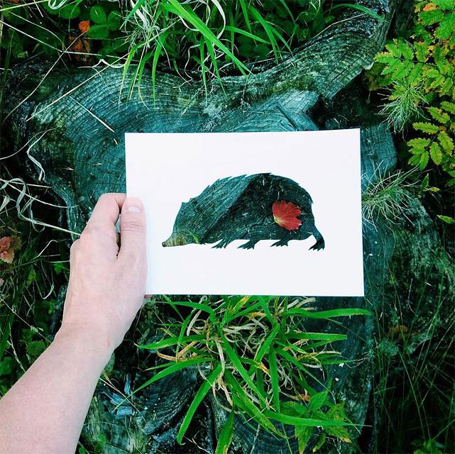 動物のシルエットで切り取って作る美しいアート作品 - 10